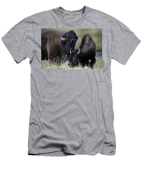 Bison Grasses Men's T-Shirt (Athletic Fit)