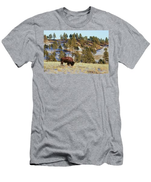 Bison In Custer State Park Men's T-Shirt (Athletic Fit)