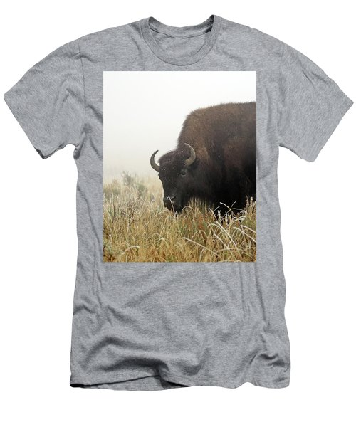 Bison In The Frosty Morning Men's T-Shirt (Athletic Fit)