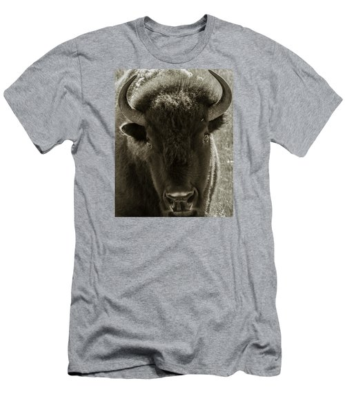 Bison Surprise Men's T-Shirt (Athletic Fit)