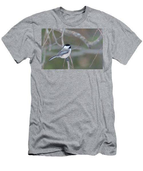 Black Capped Chickadee 1379 Men's T-Shirt (Slim Fit) by Michael Peychich