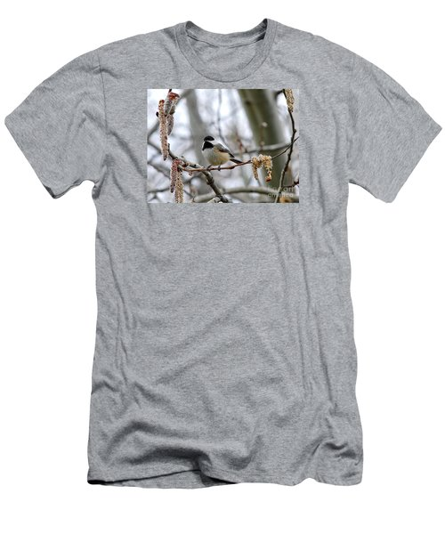 Black-capped Chickadee 20120321_39a Men's T-Shirt (Athletic Fit)
