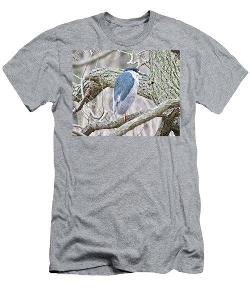Black-crowned Night-heron  Men's T-Shirt (Athletic Fit)