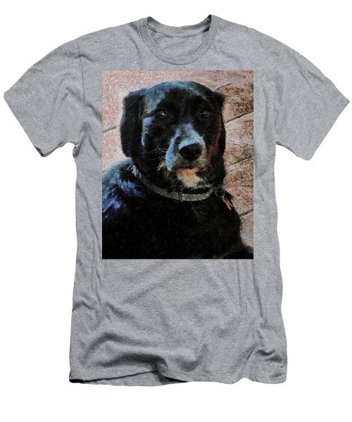 Black Dog Worry Highlights Men's T-Shirt (Athletic Fit)