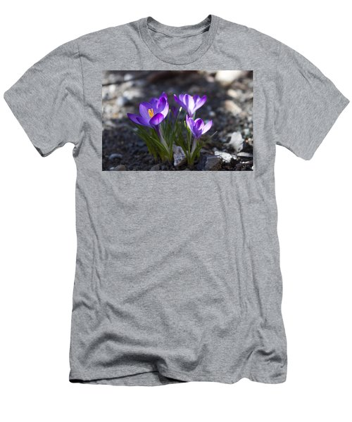 Men's T-Shirt (Slim Fit) featuring the photograph Blooming Crocus #3 by Jeff Severson