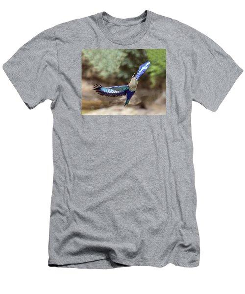 Blue-bellied Roller In Flight Men's T-Shirt (Athletic Fit)