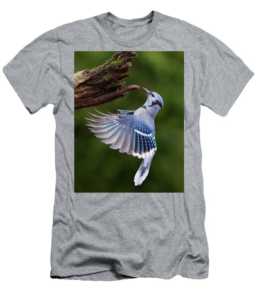 Men's T-Shirt (Slim Fit) featuring the photograph Blue Jay In Flight by Mircea Costina Photography