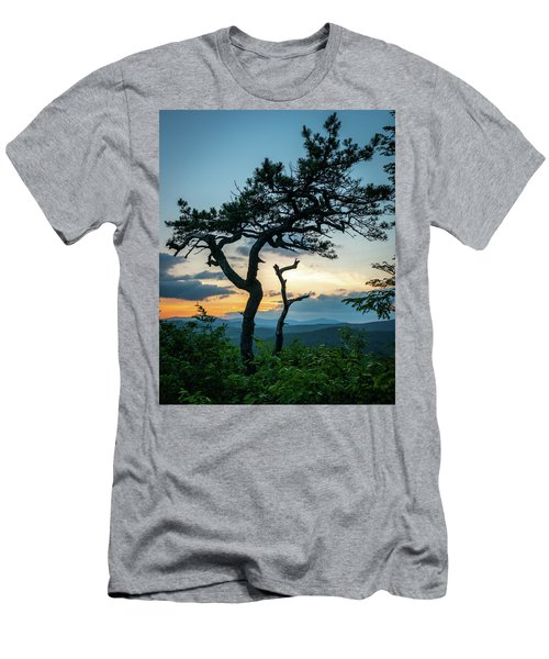 Blue Ridge Mountains Dr. Tree Men's T-Shirt (Athletic Fit)