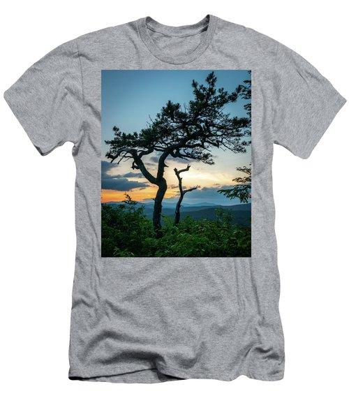 Blue Ridge Mountains Dr. Tree Men's T-Shirt (Athletic Fit)