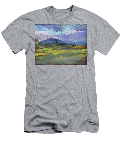 Blue Ridge Parkway Lookout Men's T-Shirt (Athletic Fit)