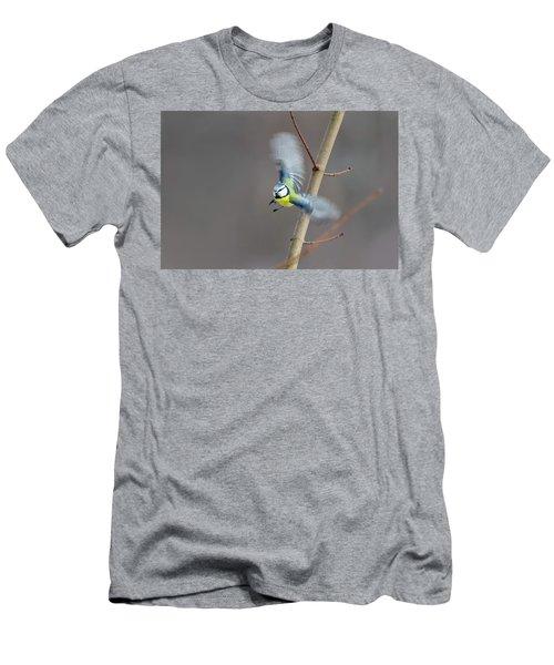 Blue Tit In Flight Men's T-Shirt (Athletic Fit)