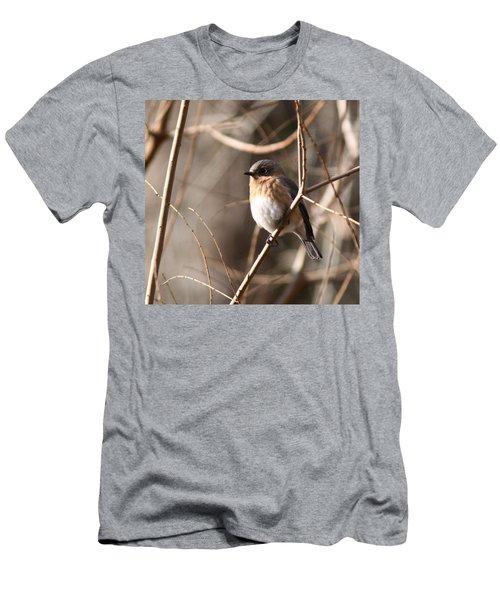 Bluebird In Beige Men's T-Shirt (Athletic Fit)