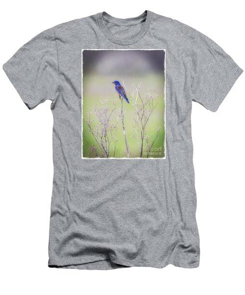 Bluebird On Hemlock Men's T-Shirt (Slim Fit)
