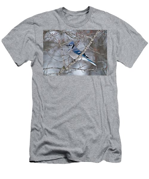 Bluejay 1358 Men's T-Shirt (Athletic Fit)