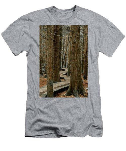 Boardwalk Among Trees Men's T-Shirt (Slim Fit) by Scott Holmes