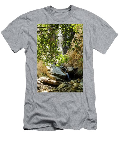 Bonita Falls Through Leaves Men's T-Shirt (Athletic Fit)