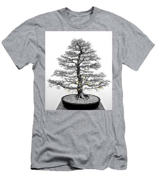 Bonsai Elm Tree - Canberra - Australia Men's T-Shirt (Athletic Fit)