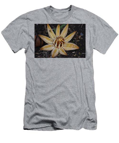 Botanical Garden Seed Pod Men's T-Shirt (Slim Fit) by Lori Seaman