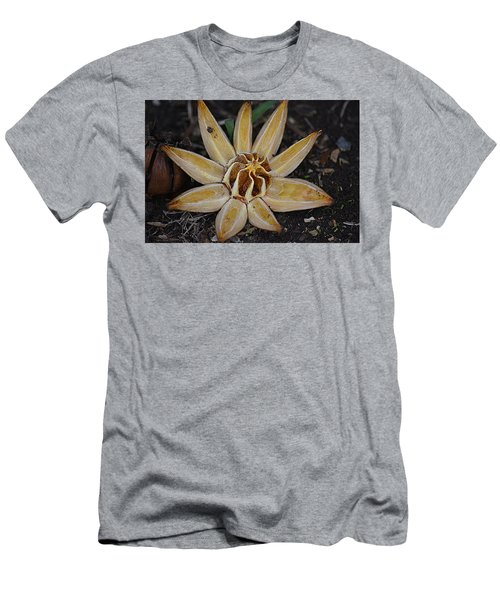 Botanical Garden Seed Pod Men's T-Shirt (Athletic Fit)