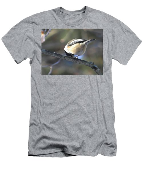 Bowing On A Branch Men's T-Shirt (Athletic Fit)