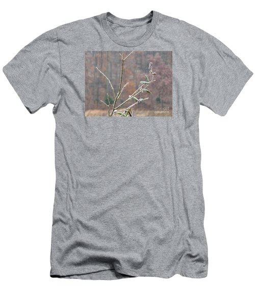 Branches In Ice Men's T-Shirt (Slim Fit) by Craig Walters