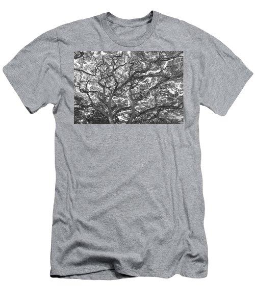 Branches Men's T-Shirt (Athletic Fit)