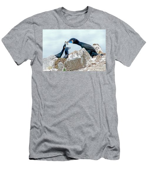 Brandt's Cormorant Feeding Family Men's T-Shirt (Athletic Fit)