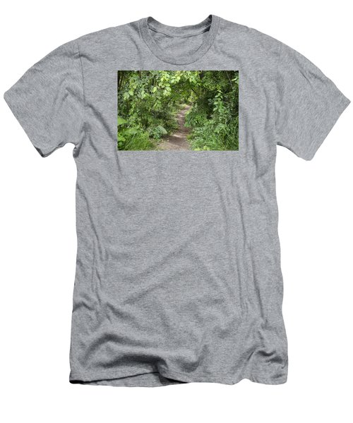 Bright Path In Leafy Forest Men's T-Shirt (Athletic Fit)