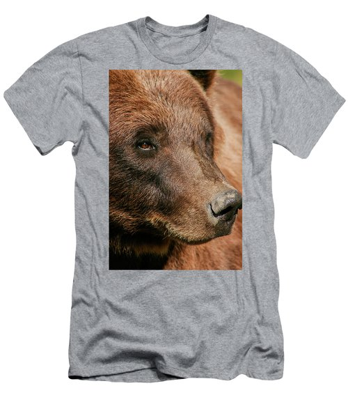 Brown Bear Men's T-Shirt (Athletic Fit)