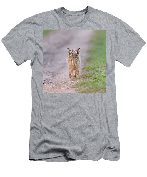 Brown Hare Approaching Down Track Men's T-Shirt (Athletic Fit)