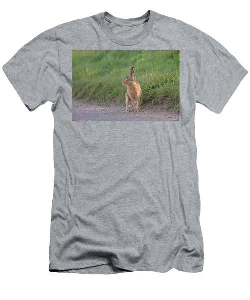 Brown Hare Listening Men's T-Shirt (Athletic Fit)