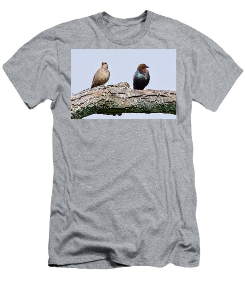 Brown Headed Cowbirds Sitting In A Tree Men's T-Shirt (Athletic Fit)
