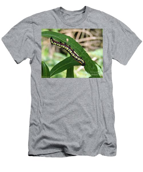 Brown Hooded Owlet Moth Larva  Men's T-Shirt (Athletic Fit)