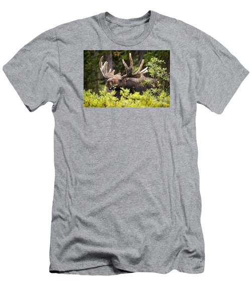 Men's T-Shirt (Slim Fit) featuring the photograph Browser by Aaron Whittemore