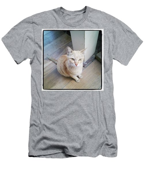 Men's T-Shirt (Athletic Fit) featuring the photograph Brunch Companion. I Couldn't Resist by Mr Photojimsf