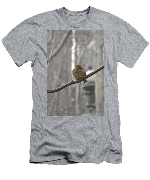 Bryant Park Bird Nyc Men's T-Shirt (Slim Fit) by Henri Irizarri