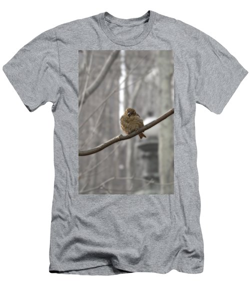 Bryant Park Bird Nyc Men's T-Shirt (Athletic Fit)