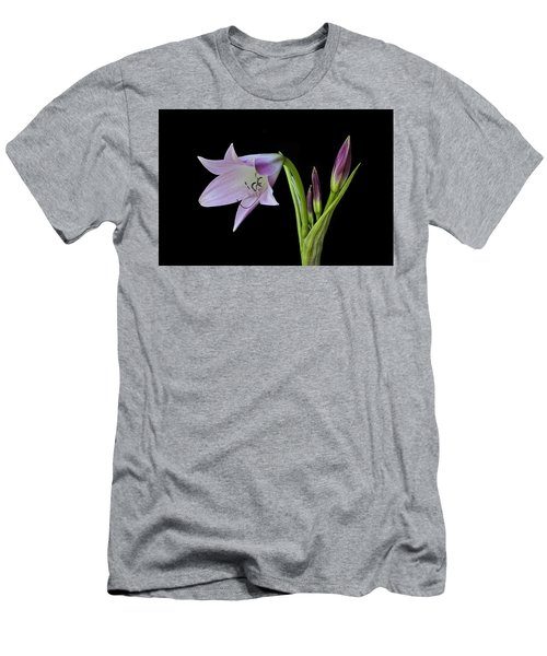 Budding Lily Men's T-Shirt (Athletic Fit)