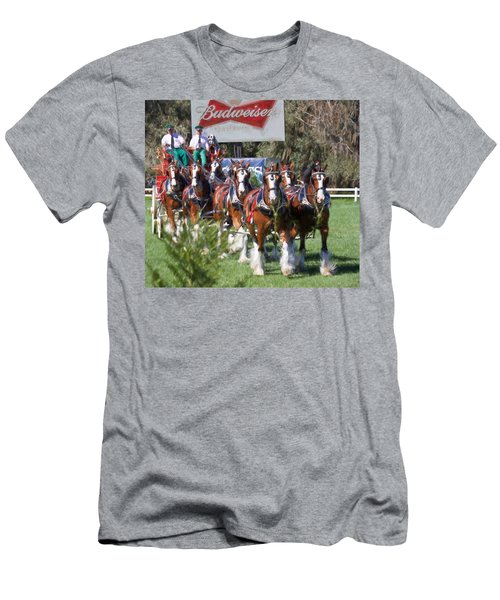Budweiser Clydesdales Perfection Men's T-Shirt (Athletic Fit)