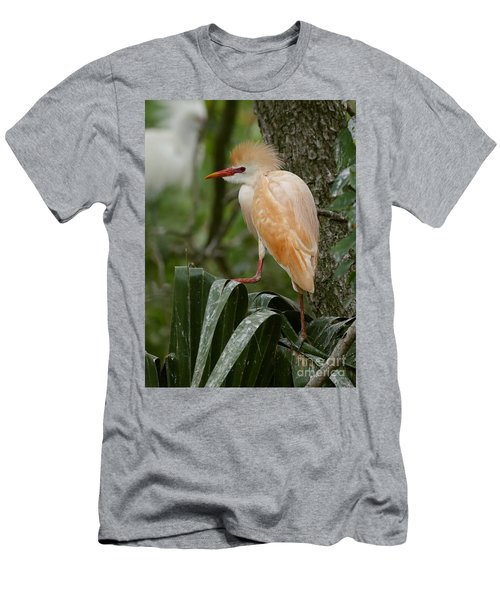Buffy - The Cattle Egret Men's T-Shirt (Slim Fit) by Myrna Bradshaw