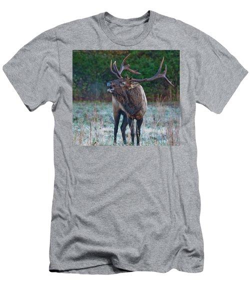 Bugling Elk Men's T-Shirt (Athletic Fit)