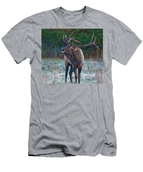 Bugling Elk Men's T-Shirt (Athletic Fit)