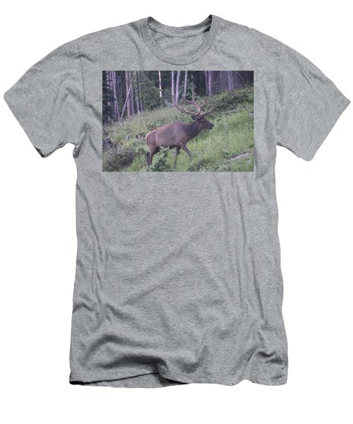 Bull Elk Rocky Mountain Np Co Men's T-Shirt (Athletic Fit)