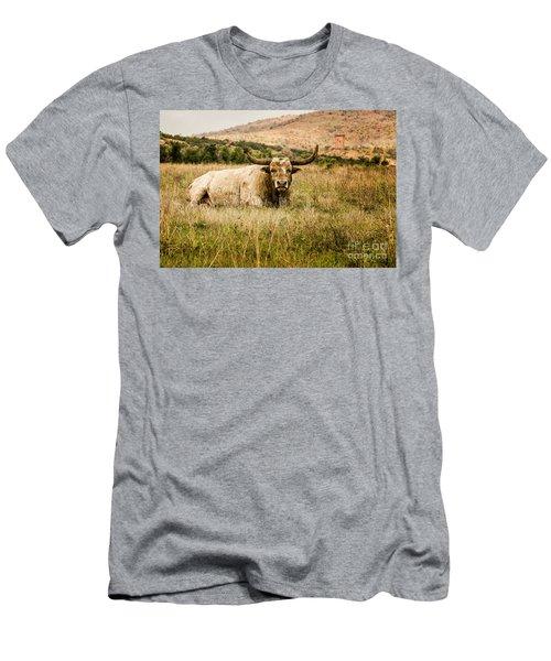 Bull Longhorn Men's T-Shirt (Athletic Fit)