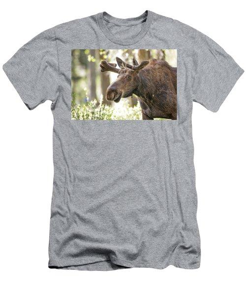 Bull Moose Men's T-Shirt (Athletic Fit)