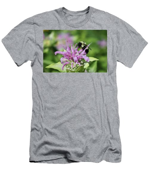 Bumblebee On Bee Balm Men's T-Shirt (Athletic Fit)