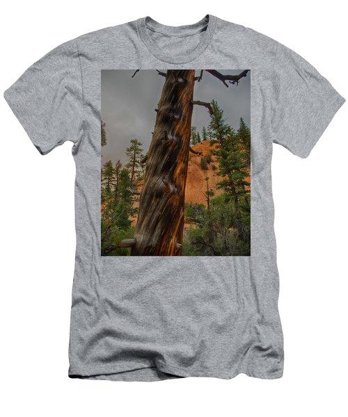 Burned Men's T-Shirt (Athletic Fit)