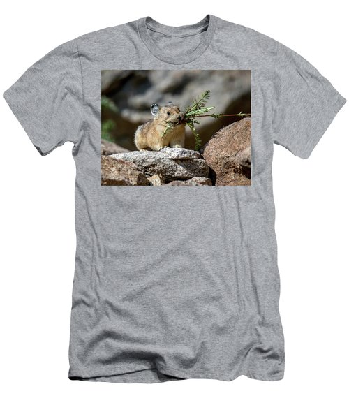Busy As A Pika Men's T-Shirt (Athletic Fit)
