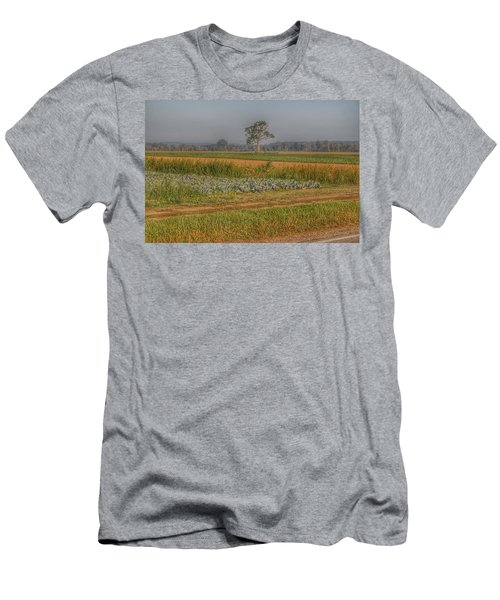 2009 - Cabbage And Pumpkin Patch Men's T-Shirt (Athletic Fit)