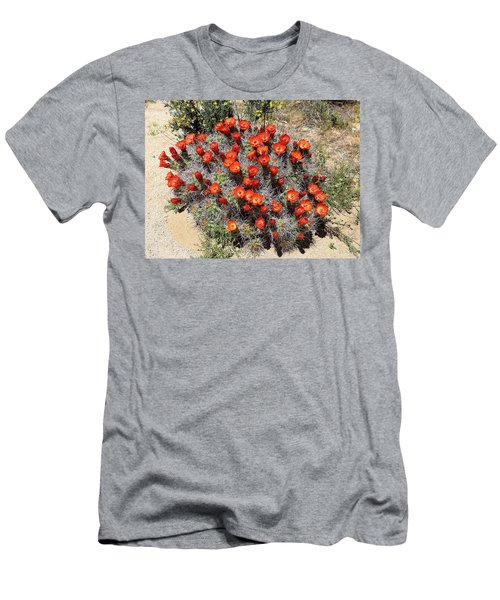 Men's T-Shirt (Slim Fit) featuring the photograph Cactus Bloom In Jtnp by Viktor Savchenko